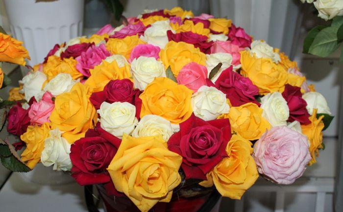 Доставка цветов в краснодре заказать по почте комнатные цветы в беларуси
